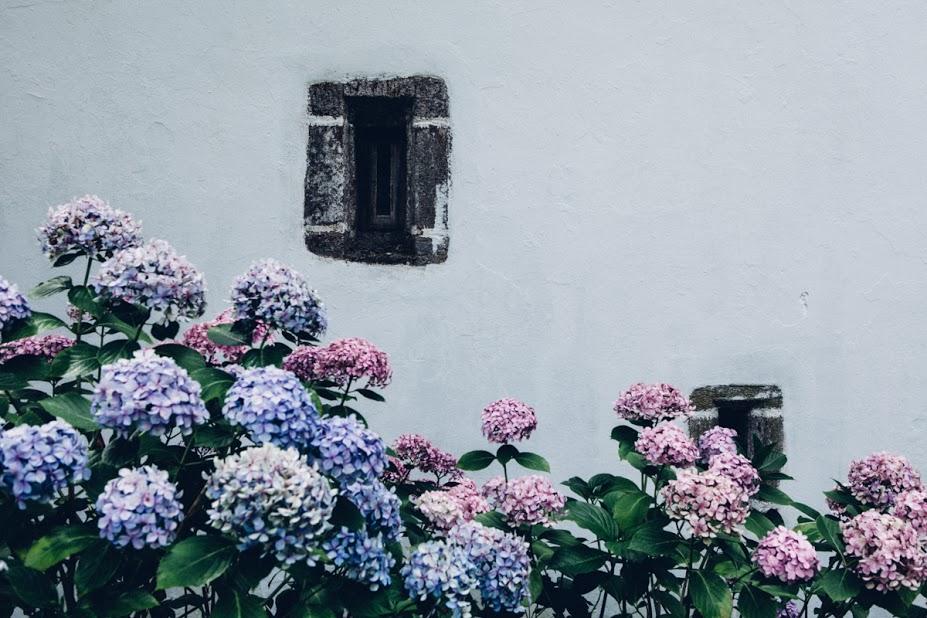 pazo-de-sergude-detalles-jardin-bodas