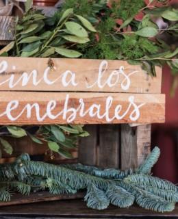 loreto-made-in-style-finca-bodas-los-enebrales-hotel-rural-0025